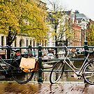 Bicycle by David Preston