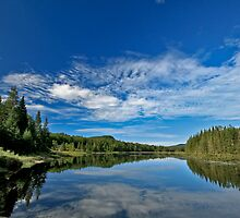 Little Safford Lake by Benjamin Young