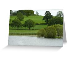 The beauty of trees Greeting Card