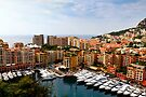 Monaco Harbor by Yelena Rozov
