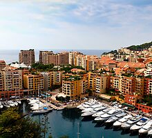 Monaco Harbor by Yelena Rozov