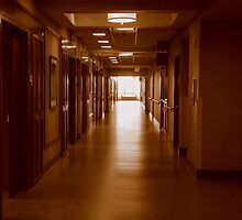 EMPTY HALL  ~ MJH series - 7 ^ by ctheworld