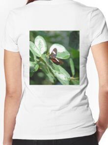 Butterfly Greenery Women's Fitted V-Neck T-Shirt