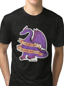 Dragons and Stuff Tri-blend T-Shirt