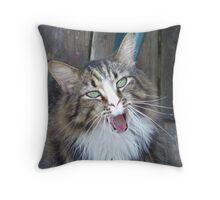 Roar!!!!!! Throw Pillow