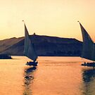 Felucca on the Nile, Egypt by Alberto  DeJesus