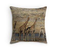 Giraffes at waterhole, Etosha. Throw Pillow