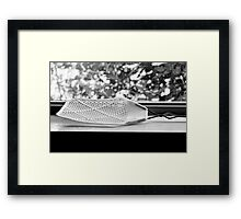 Fly Swatter Framed Print