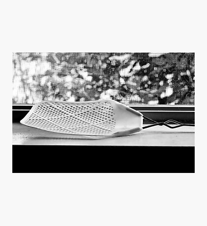 Fly Swatter Photographic Print