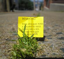 a warning for bees by Oil Water Artt