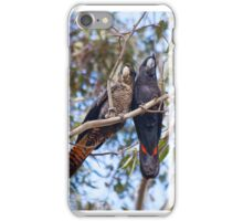 Red tail Black Cockatoo, Perth Western Australia iPhone Case/Skin