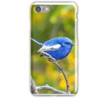White Wing Fairy Wren, Burns Beach, Western Australia iPhone Case/Skin