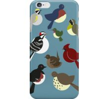 Nine Birds iPhone Case/Skin