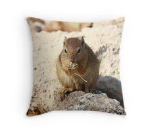 Squirrel, Etosha National Park Throw Pillow