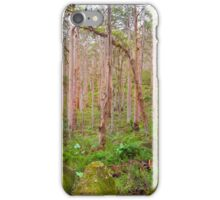 Boranup Karri Forest, Southwest Australia iPhone Case/Skin