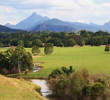 wollumbin dreaming ... by gail woodbury
