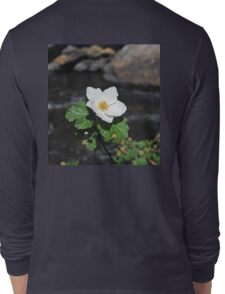 White Wild Rose in Big Thompson Canyon  Long Sleeve T-Shirt