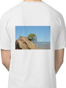 Shrub and Rock at Canon City  Classic T-Shirt