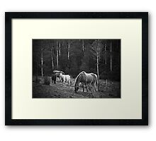 A Little Earth to Stand On  Framed Print