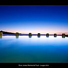 Ross Jones Memorial Pool by JayDaley