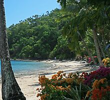 Long Island, Queensland, Australia #2 by Sea-Change