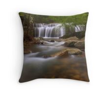 Burden Falls, Shawnee National Forest Throw Pillow