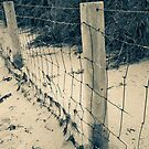 Green's Pool Fence by pennyswork