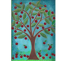 Juicy Red Fruit Tree Photographic Print