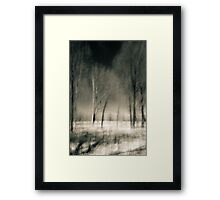 Kitty Todd Nature Preserve Early Summer Framed Print