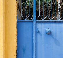 Colours of Greece by Peter Vines