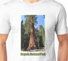 Giant Sequoia, Southern California, USA. Nature photograpgy. Unisex T-Shirt