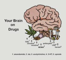 Your Brain on Drugs T-Shirt