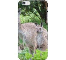 Beautiful Floe & her latest Joey! 'Arilka' Mount Pleasant. iPhone Case/Skin