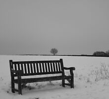 Jacks Bench In Winter by Beargrizzly