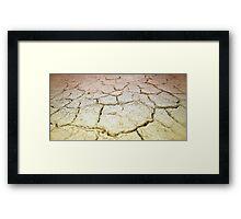 Bone dry in the outback Framed Print