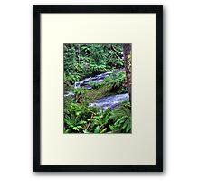 otways 3 Framed Print