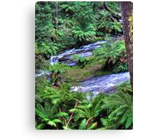 otways 3 Canvas Print