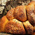 """Monkey Bread"" Fungus by Deb Fedeler"