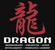 Chinese Zodiac Dragon Characteristics by ChineseZodiac