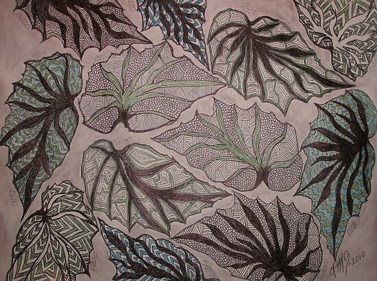 Angel Wing Begonia Leaves by linmarie
