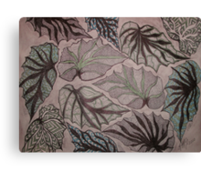 Angel Wing Begonia Leaves Canvas Print