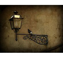 Pidgeon Street Photographic Print