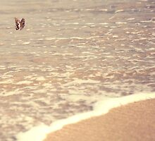 Butterfly on the beach, Coral bay, Western Australia by Marc Russo