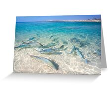 Bills bay, Coral Bay, Western Australia Greeting Card
