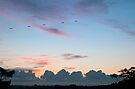 Five Plane Sunrise (blend) by Odille Esmonde-Morgan