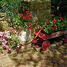 The Patio Garden by wiscbackroadz
