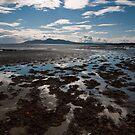 Minerstown Beach by Alan McMorris