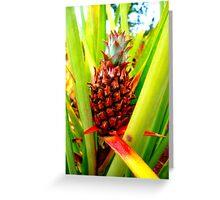 Dole Plantation Hawaii Greeting Card