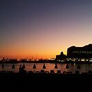 Puerto Rico Sunset by Alan McMorris