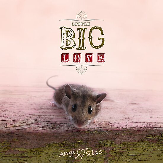 Little Big Love - Book Cover + Contest! by AngiandSilas